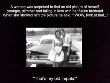 Name:  Impala.jpg
