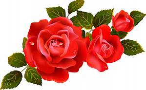 Name:  roses.jpg Views: 153 Size:  17.4 KB