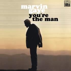 Name:  Marvin Gaye You're The Man copy.jpg Views: 720 Size:  7.3 KB